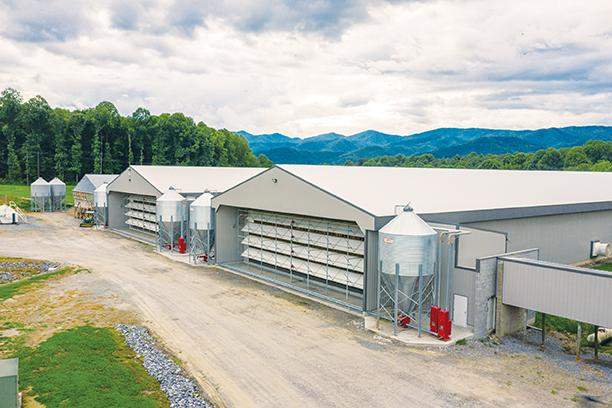 Dutt & Wagner egg farm outside Andrews produces about 500,000 eggs daily, making it one of the largest in the Southeast.