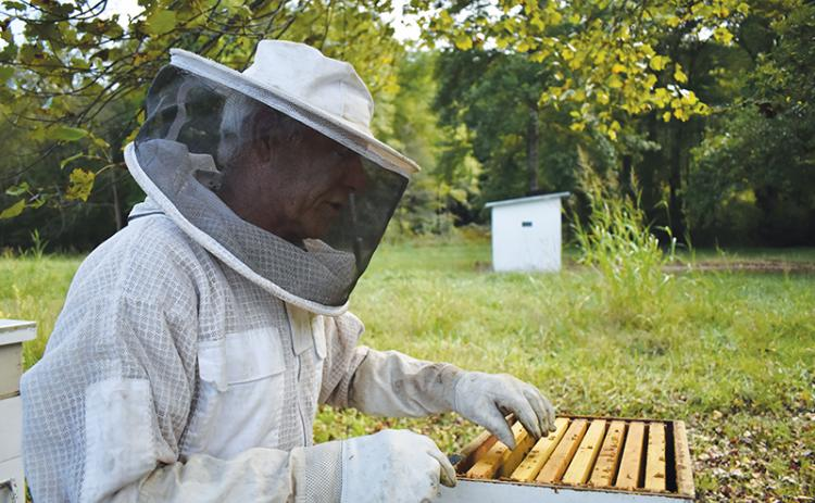 Don Reynolds keeps honeybees partly because of their vital role in our ecosystem.