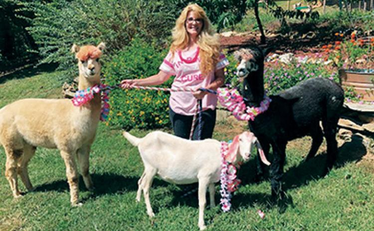 Melissa and Matt Reschke are donating 20 percent of October admission fees at Shaka Alpaca Farm in Murphy to local breast cancer support organizations. Melissa is a survivor of the disease.
